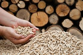 Deal sees McInnis cement plant fueled by forest waste