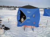 Tent with Heater inside_PCL