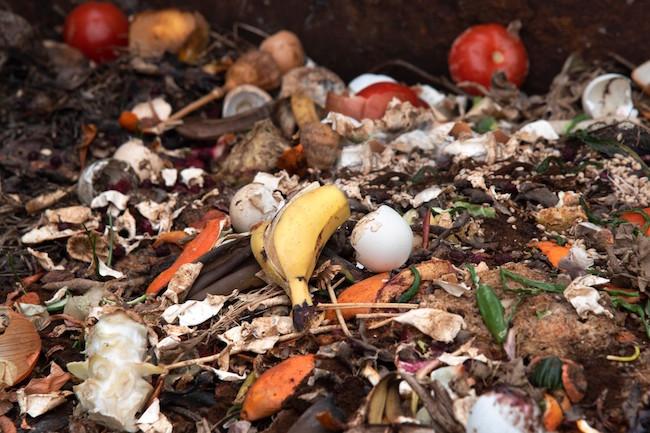 organic_waste_compost_garbage